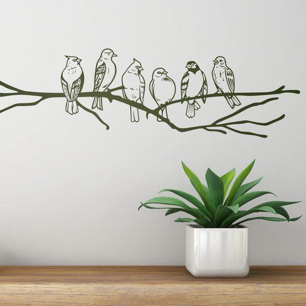 Stickers muraux: Oiseaux sur une branche