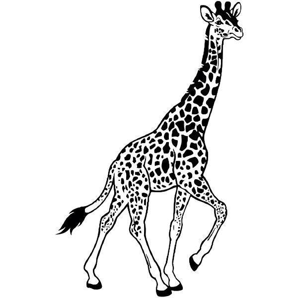Stickers muraux: Giraffe marche
