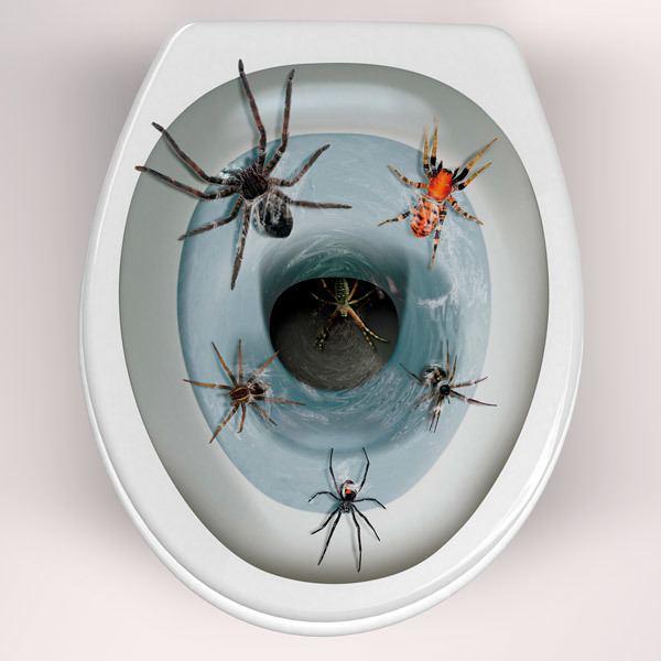 Stickers muraux: Araignées sortant de la cuvette de WC