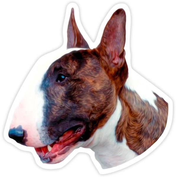 Autocollants: Bull Terrier
