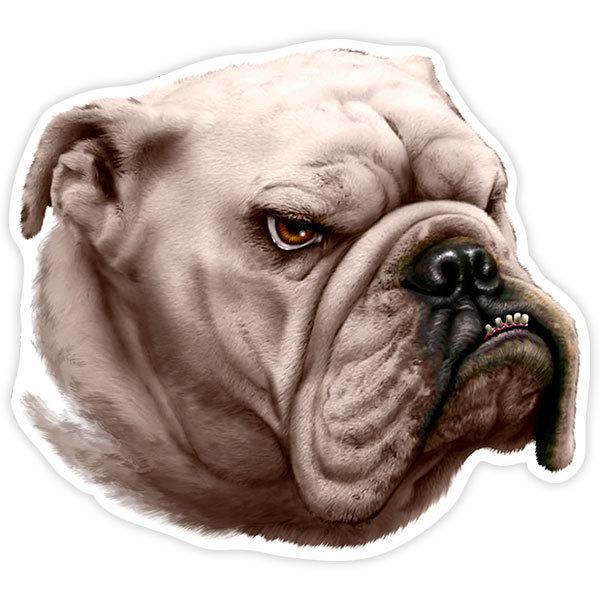 Autocollants: Bulldog