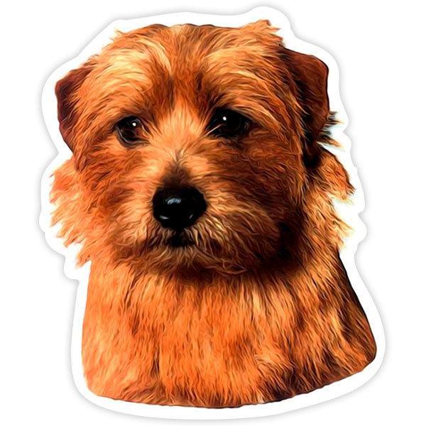 Autocollants: Norfolk Terrier