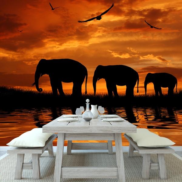 Papier peint vinyle: Elefantes