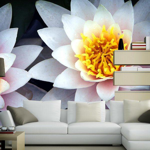Papier peint vinyle: Fleurs de Lotus