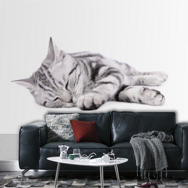 Papier peint vinyle: Moon Cat