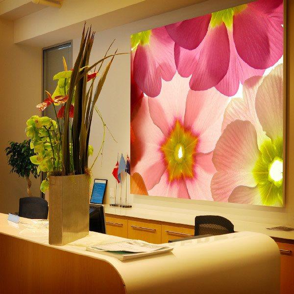 Papier peint vinyle: Flores 21