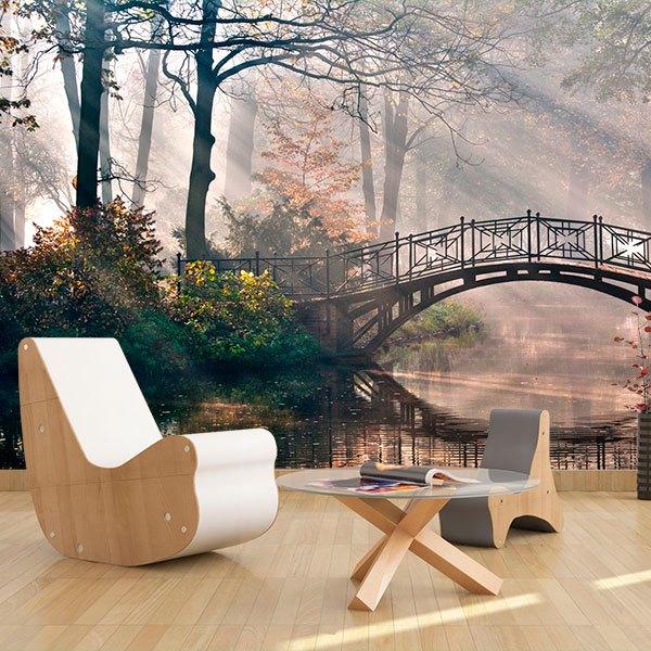 Papier peint vinyle: Puente en el bosque