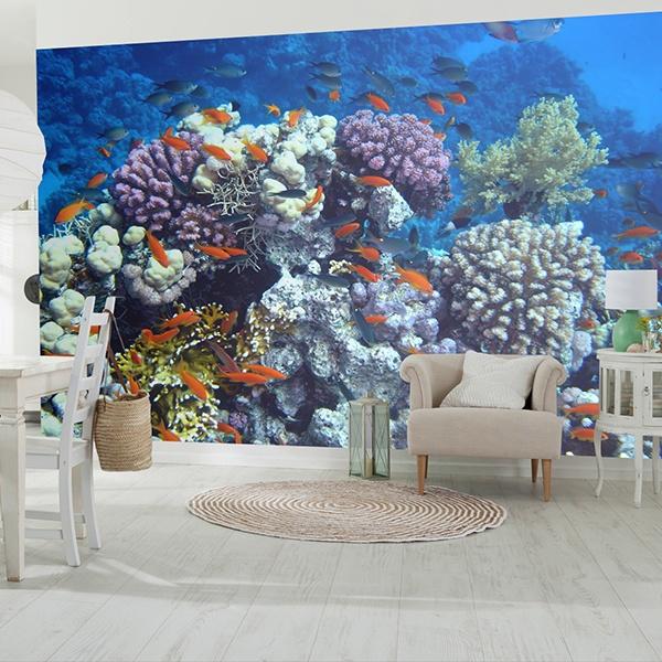 Papier peint vinyle: Baignade dans le corail