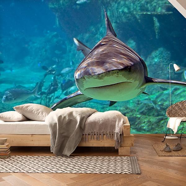 Papier peint vinyle: Requin