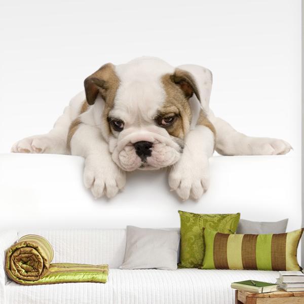 Papier peint vinyle: Bulldog