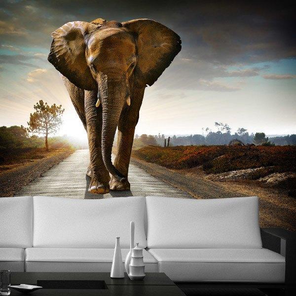 Papier peint vinyle: éléphant