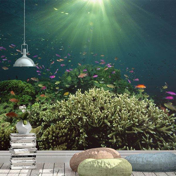 Papier peint vinyle: Coral à la lumière