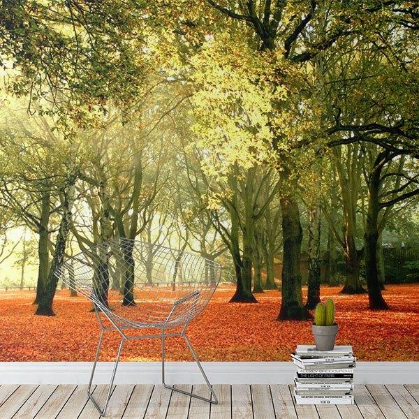 Colorful forest - Papier peint paysage ...