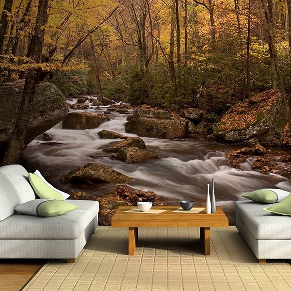 Papier peint vinyle: rivière de la forêt