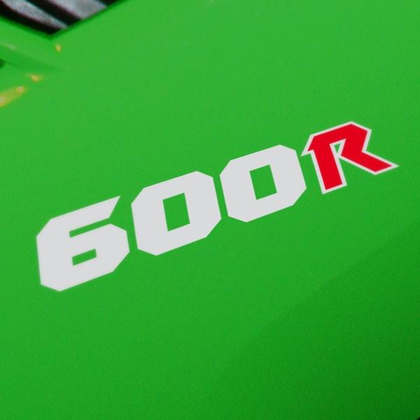 Autocollants: GPZ600R, 600R