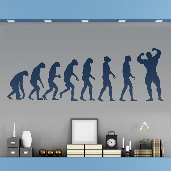 Stickers muraux: Evolution Muscle
