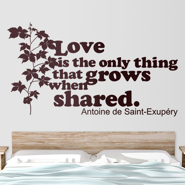 Stickers muraux: Love is the only thing that grows...