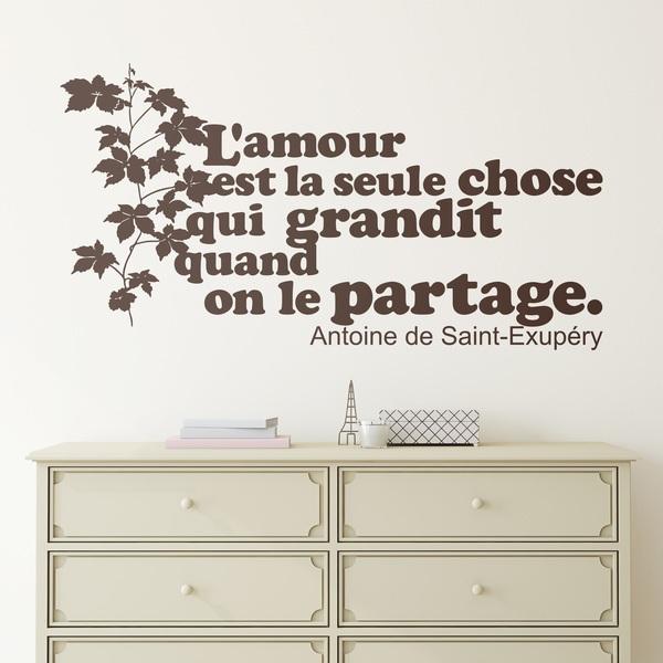 Stickers muraux: L amour est la seule chose qui grandit...