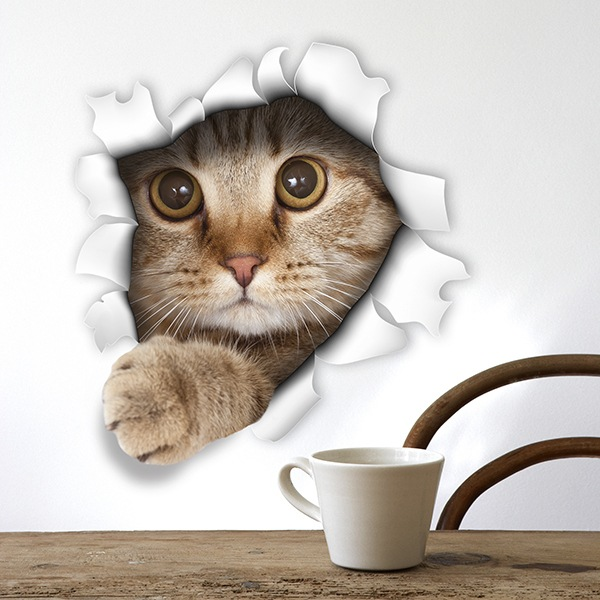 Stickers muraux: Trou chaton