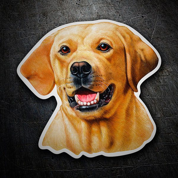 Autocollants: Yellow Labrador Retriever