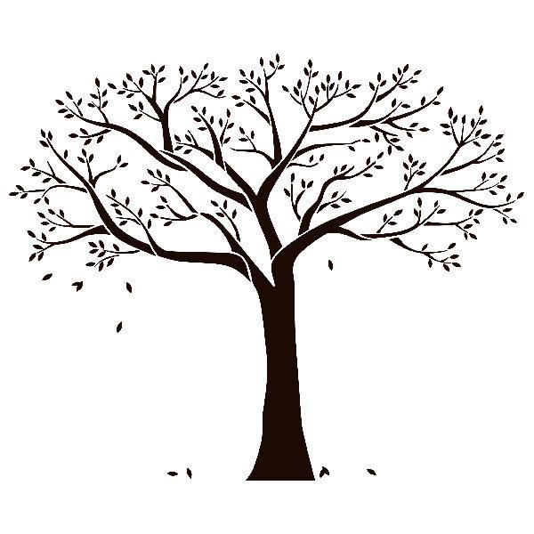sticker mural arbre de la famille. Black Bedroom Furniture Sets. Home Design Ideas