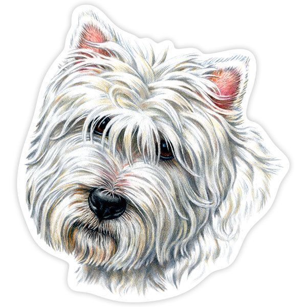 Autocollants: West Highland Terrier