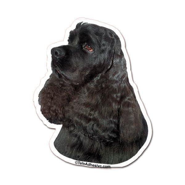 Autocollants: Black Cocker Spaniel