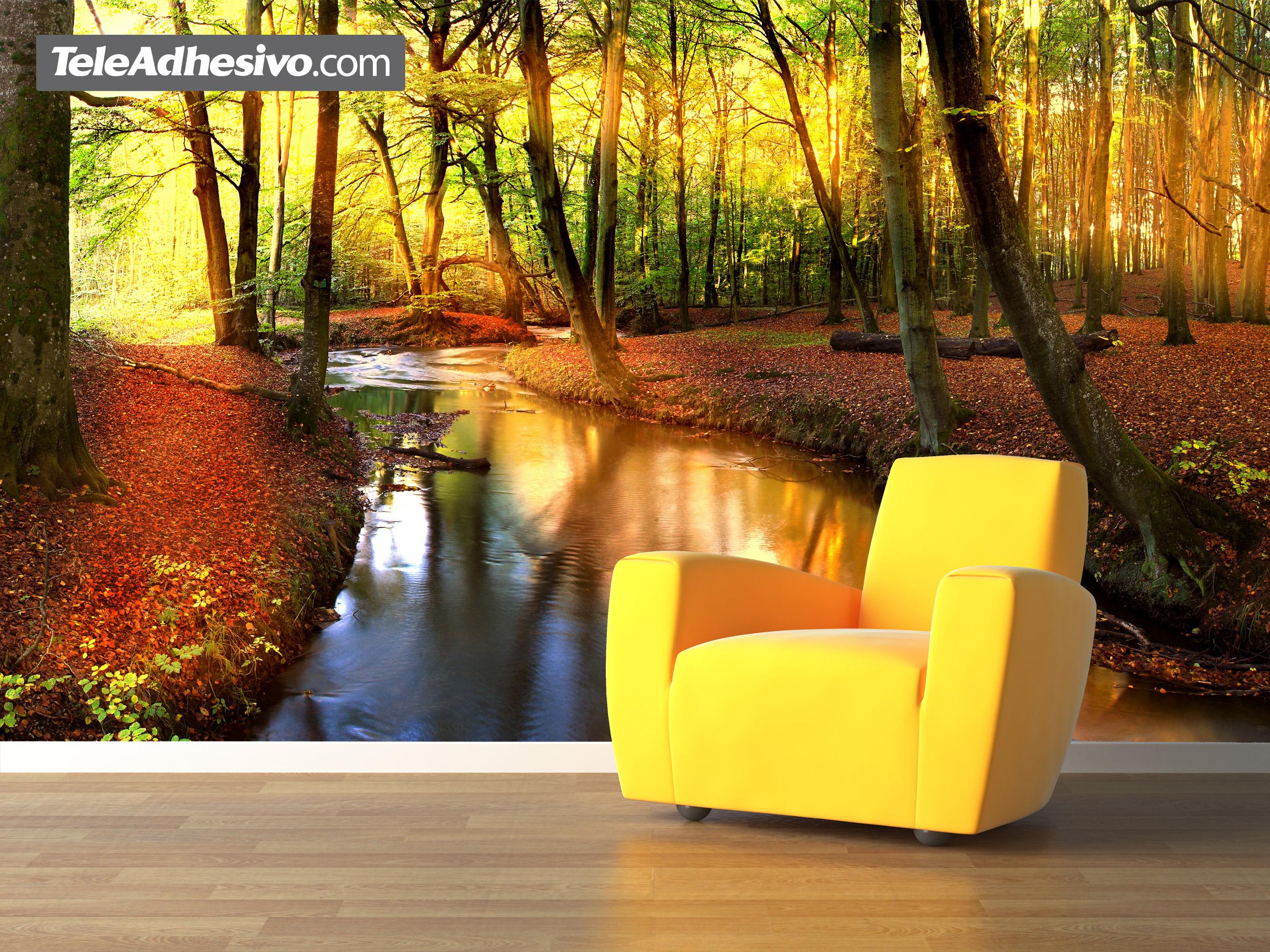 forest river. Black Bedroom Furniture Sets. Home Design Ideas