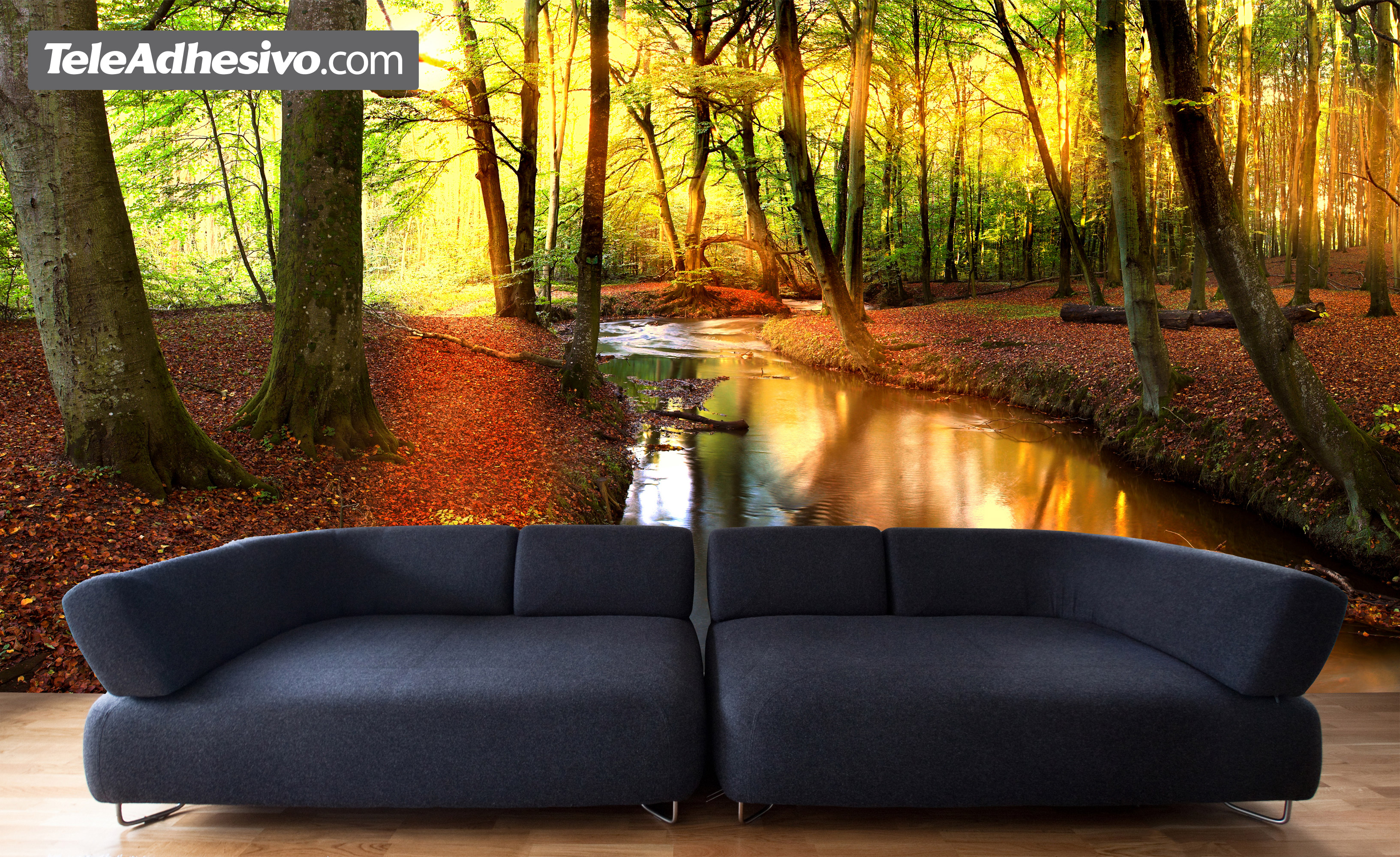 forest river. Black Bedroom Furniture Sets. Home Design Ideas