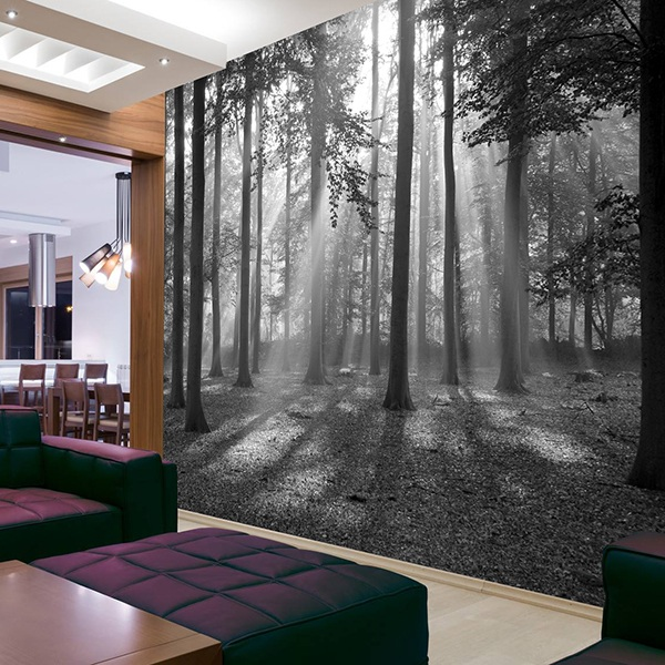 poster xxl for t en noir et blanc. Black Bedroom Furniture Sets. Home Design Ideas
