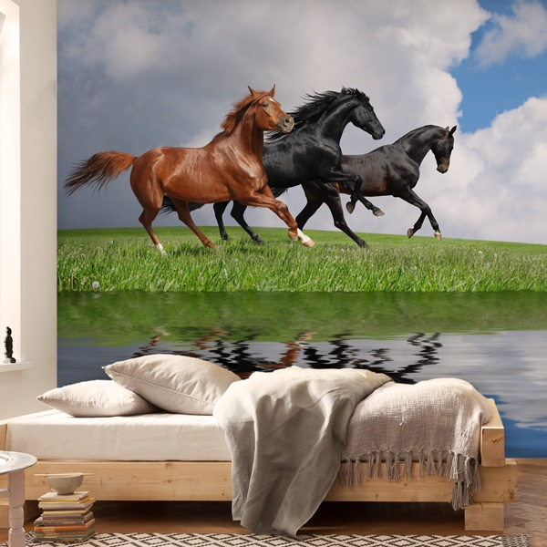 Poster xxl: Chevaux sauvages