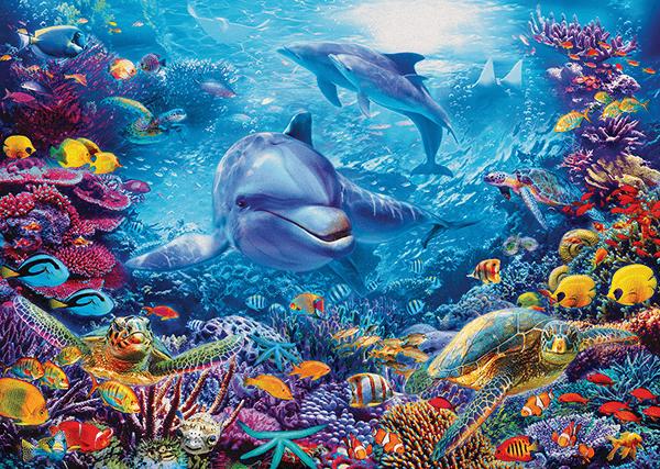 Poster Xxl: Dauphins Sous La Mer
