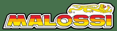 """Résultat de recherche d'images pour """"logo malossi"""""""