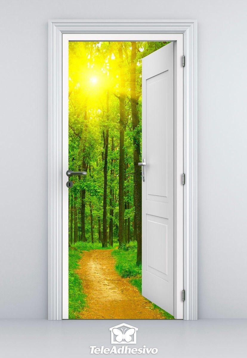 Porte Ouverte Chemin Dans Les Bois