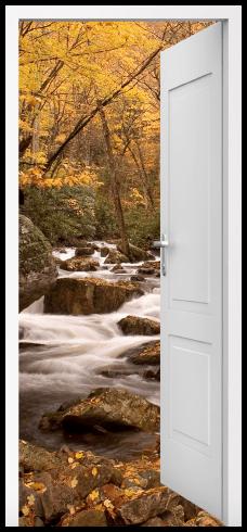 Stickers muraux: Porte ouverte ressort dans la forêt